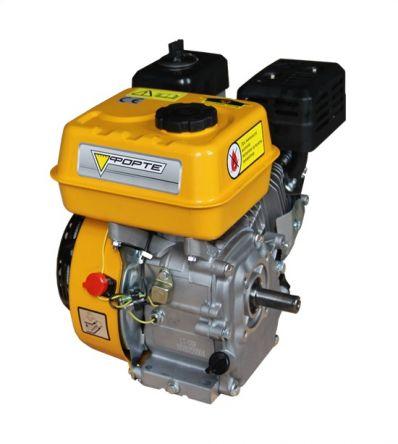 Двигатель Forte F210G (79727)