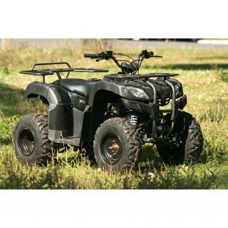 Фото - Квадроцикл Skybike Hyper 150
